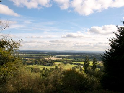 Looking south from Hascombe Hill